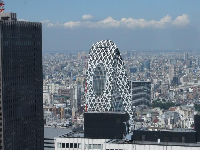 The view from the South Observatory at the Tokyo Municipal Building. Photo by Erwin Glaub