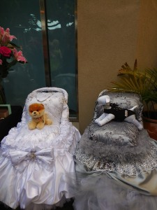 Pampered pooches...Support Ur Pet's display of fancy dog carriages